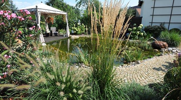 Gartengestaltung mit Gartenteich