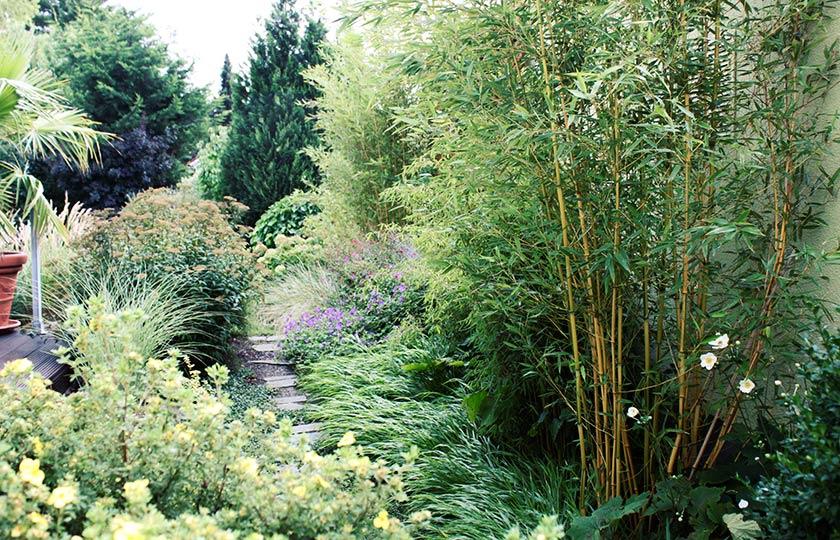Pflanzung efh 04 for Gartengestaltung leipzig
